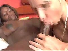 Chocolate Tranny Sex Fun 3