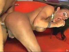 Ebony Tranny Sex 5
