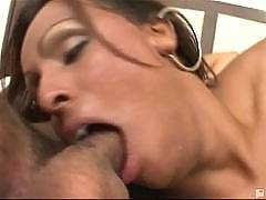 Tranny Seducers - Bia