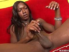 Transsexual hot porn movies